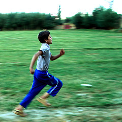 flickrcom-photos-hamed-258971456
